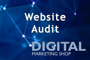 website audit by our SEO consultant